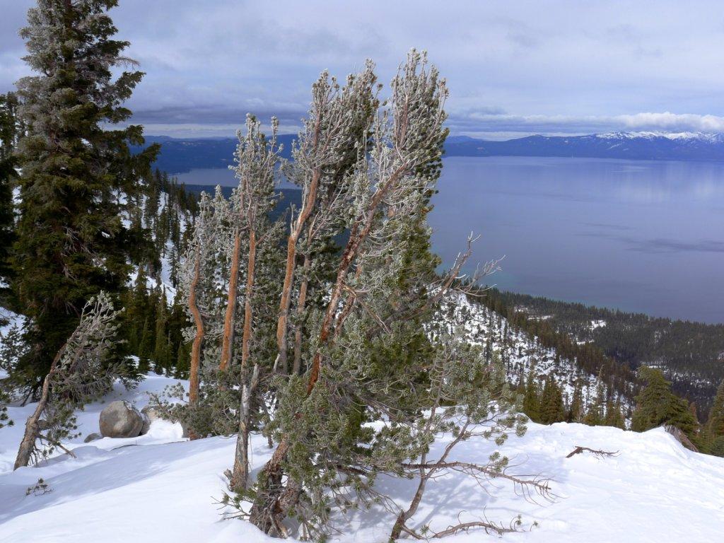 tahoe2012-018.jpg