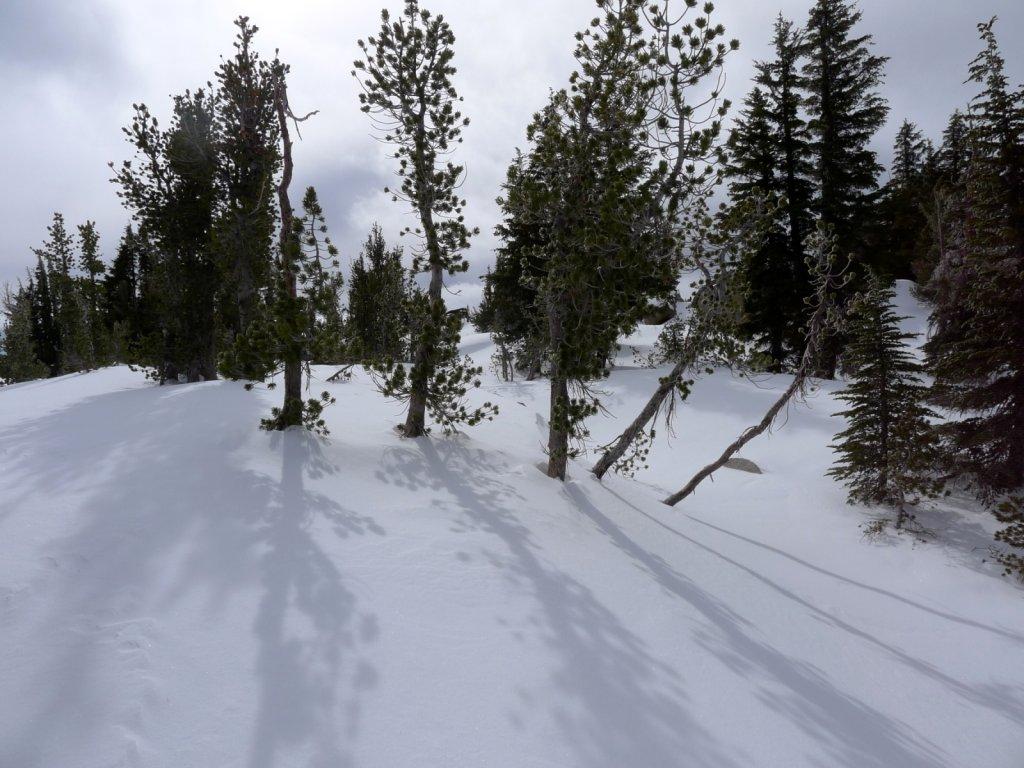 tahoe2012-019.jpg