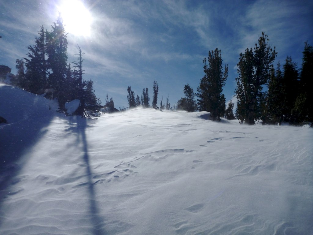 tahoe-2011-027.jpg