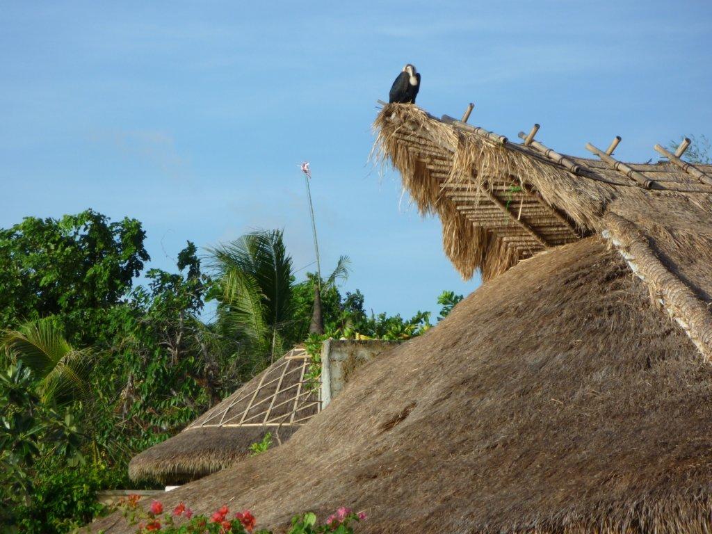 indonesia-southern-bali-019.jpg
