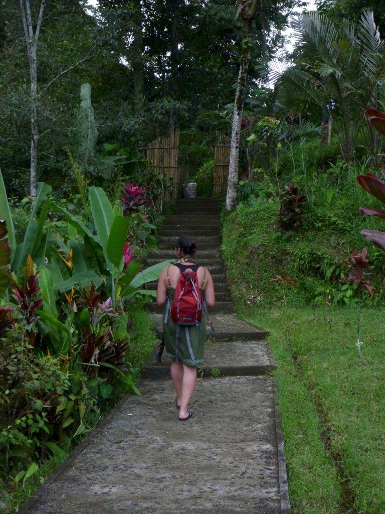 indonesia-bedugul-023.jpg