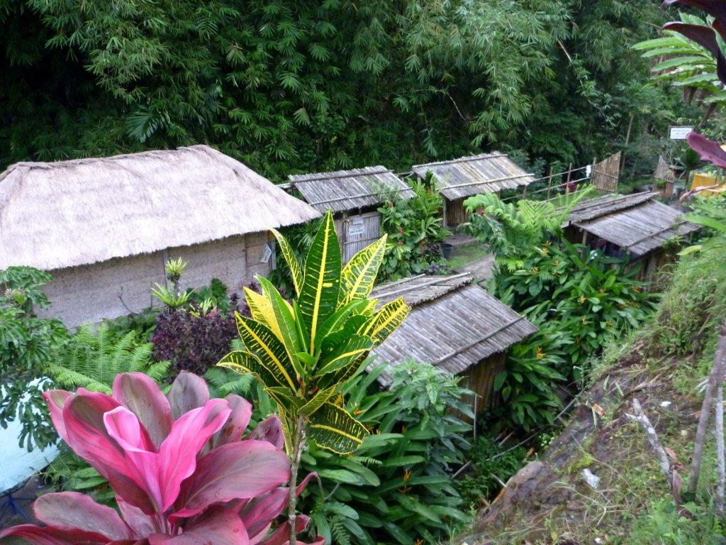 indonesia-bedugul-019.jpg