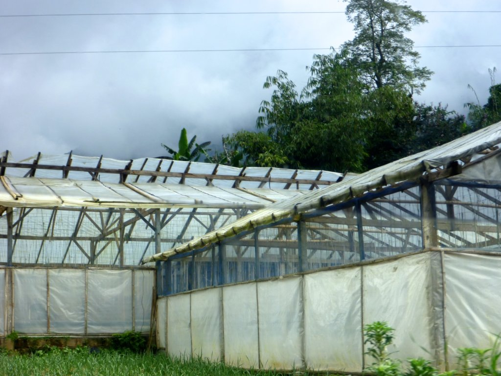 indonesia-bedugul-006.jpg