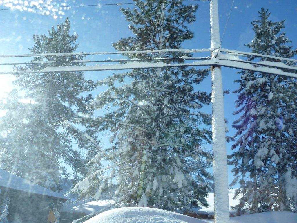 snow-months-2010-019.jpg