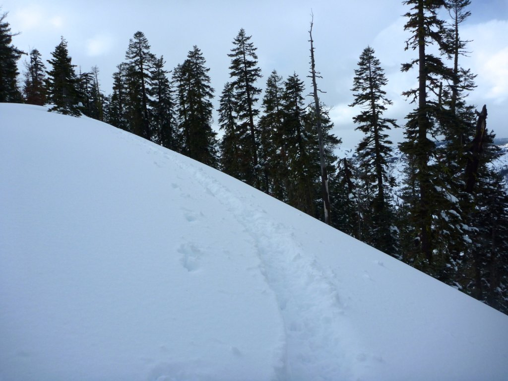 snow-months-2010-015.jpg