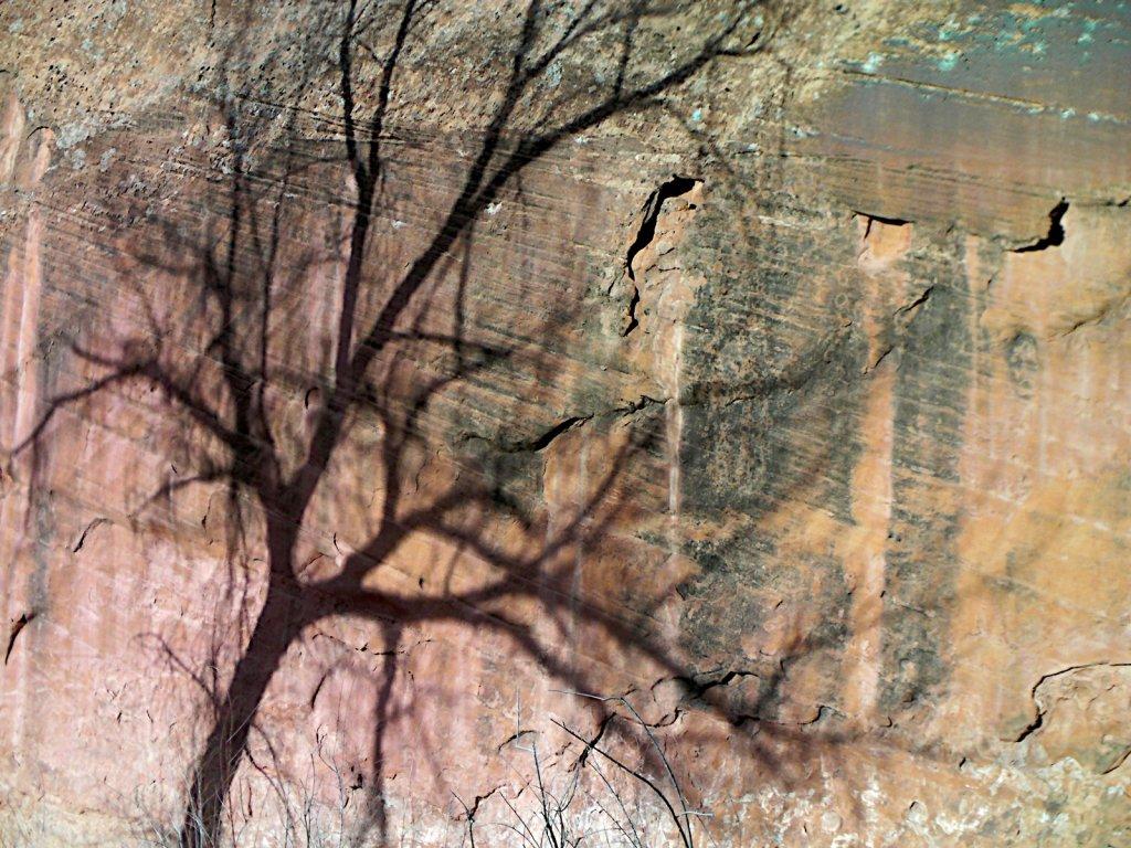 escalante-canyoneering-2009-064.jpg
