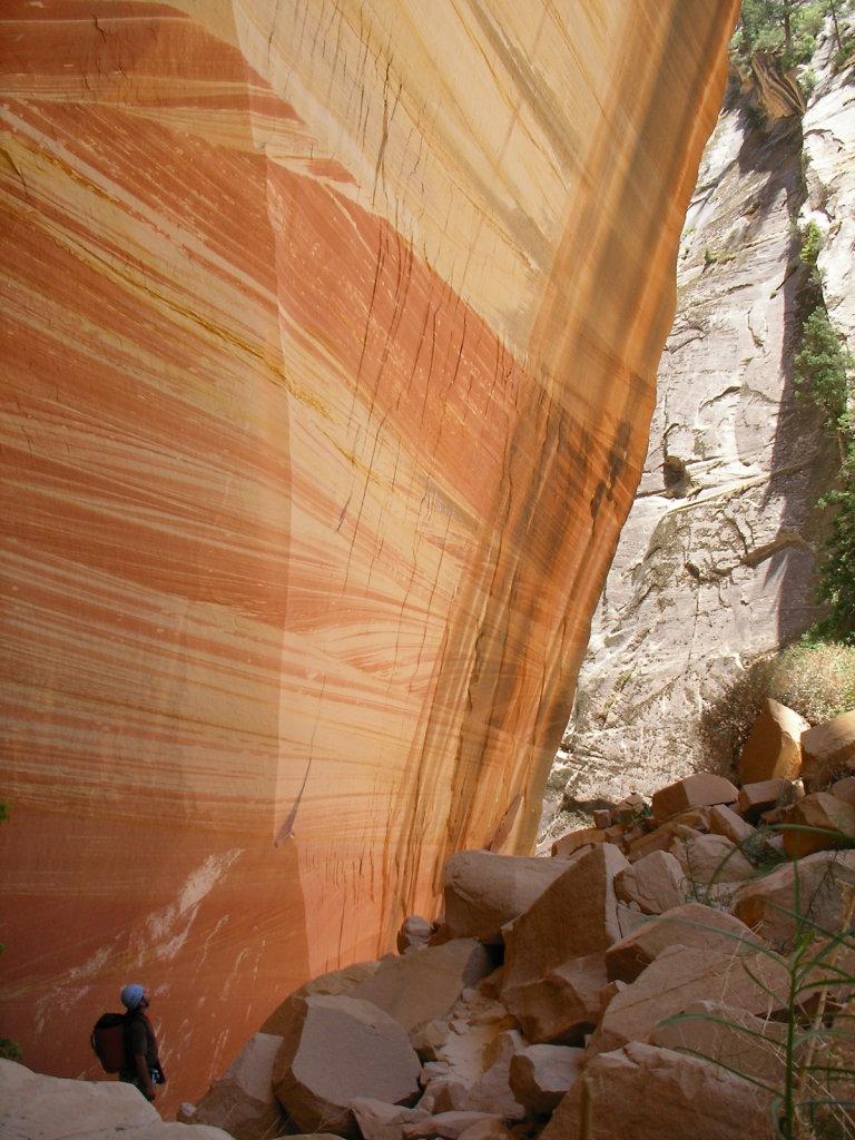 Zion Canyoneering 2006