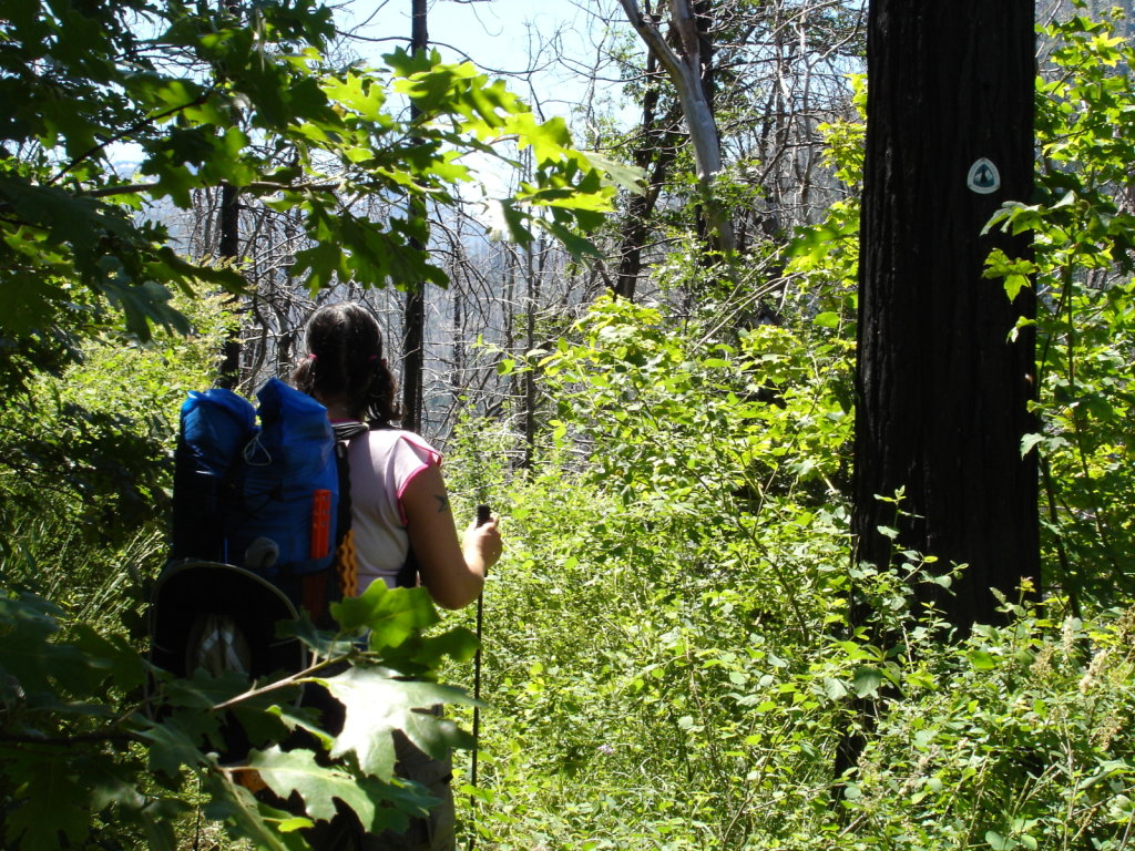 PCT 2005 - Chester to Belden